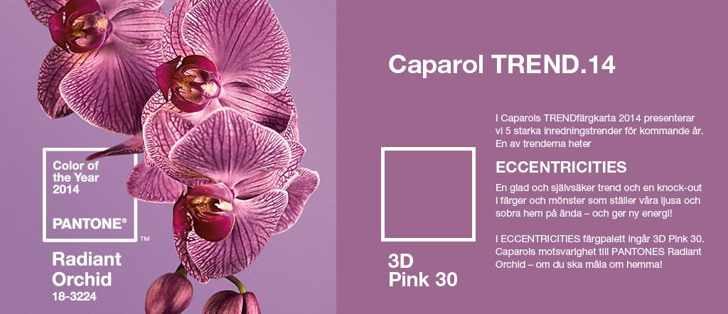 PiaK_caparol_trend_radiant orchid