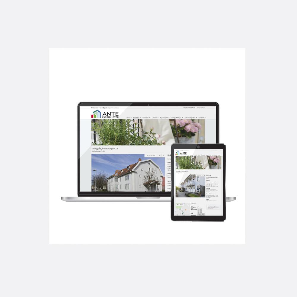 Ante-webdesign6-PiaK